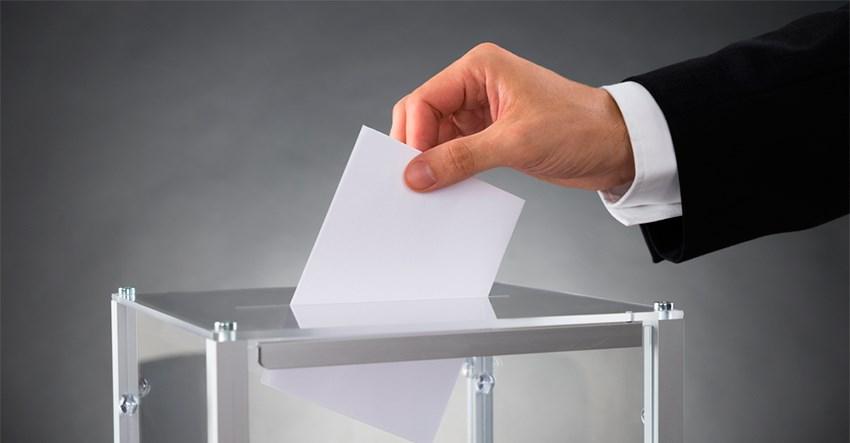elezioni consiglio ordine